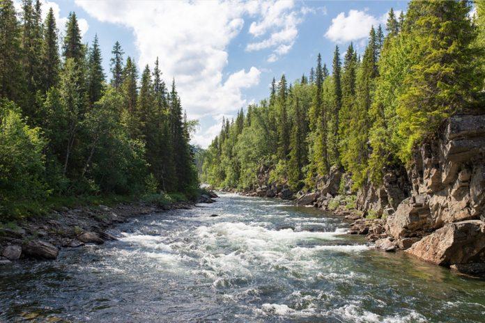 L'atteinte aux milieux humides et hydriques