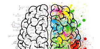 Quel côté de votre cerveau