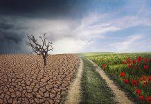 la route du changement